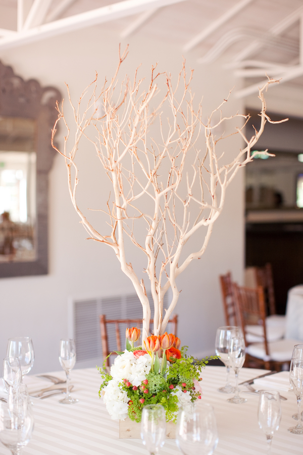 Manzanitta branches you can t beat this party rentals