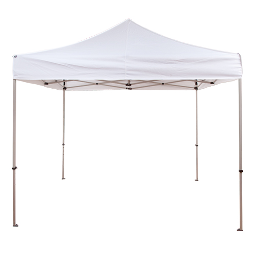 10 x 10 Canopy/ Tent